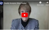 Deadly scorpion sting healed